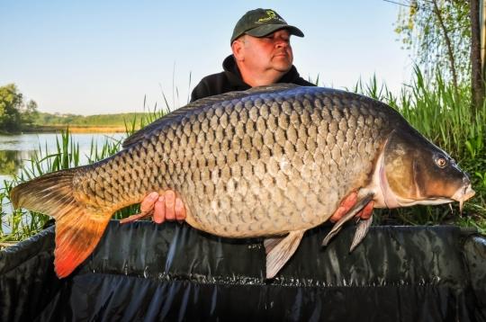 AUREL COTOROGEA | 21,7kg | aprilie 2016