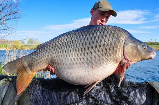 DABIEL DOBREA | 23,8kg | aprilie 2015