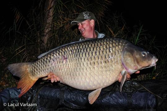 DANIEL SAVU | 32kg