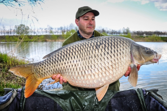 MARIUS BOILINTEANU | 21kg | March 2016
