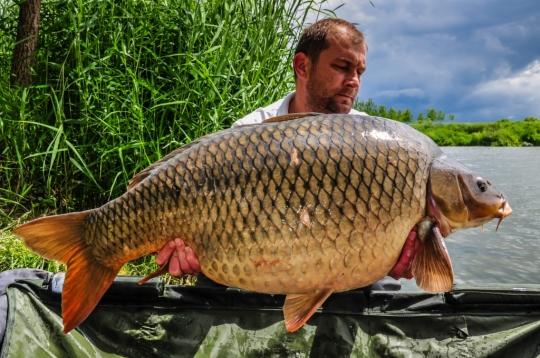 MIHAI PRODAN | 20,8kg | mai 2016