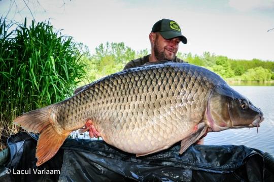 MIHAI PRODAN | 26.5kg