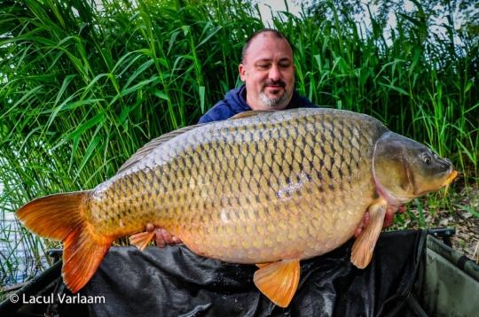 STEFAN DUMITRU | 28.6kg