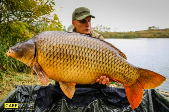 VLAD PAVLOVICI | 21,7kg | octombrie 2016 | A7