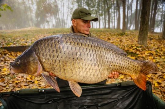 VLAD PAVLOVICI | 25.7kg