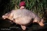ANDREI COLOTELO | 32,2kg