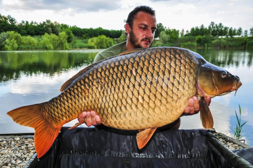 ALEXANDER TENISHEV | 20,5kg | iunie 2016 | A4