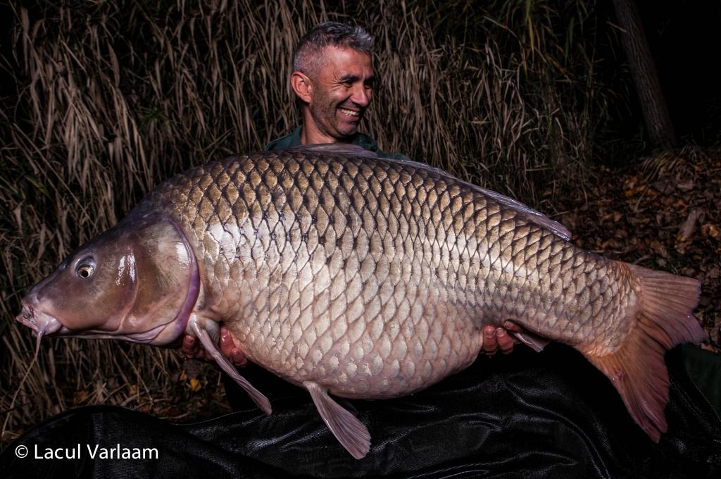 ANDREI COLOTELO | 28kg