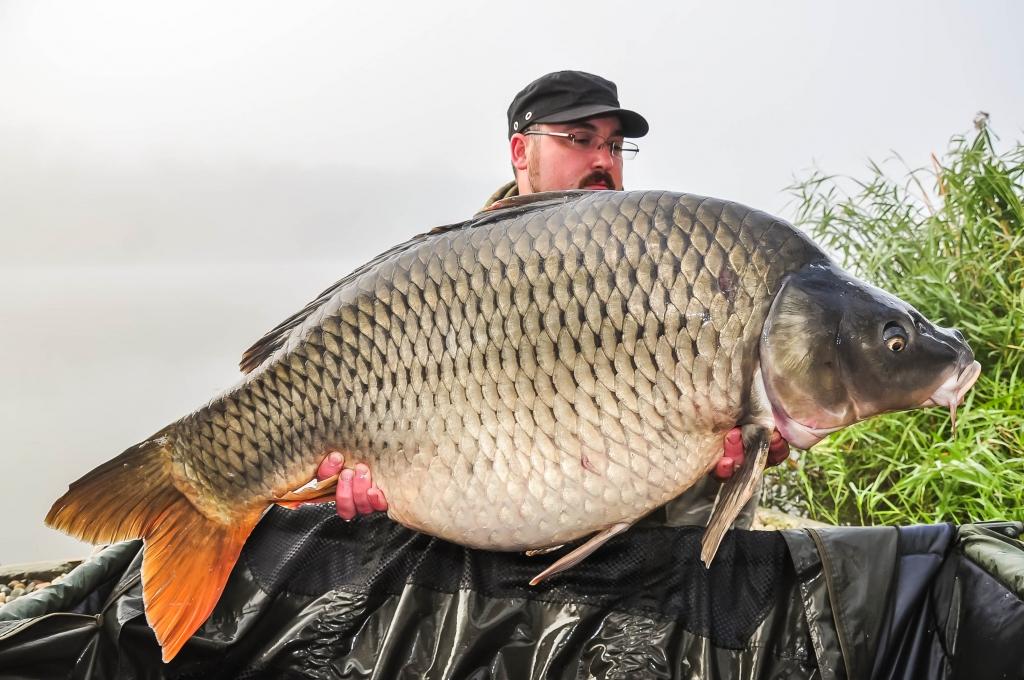 CONSTANTIN GORDILA | 21kg | octombrie 2014