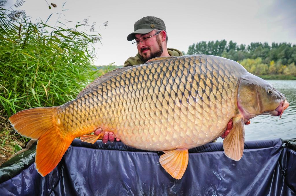 CONSTANTIN GORDILA | 22,6kg | octombrie 2015