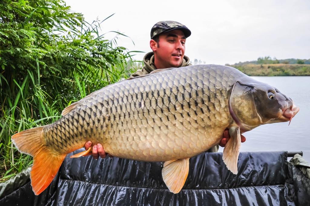 DAN PETRE | 20,4kg | octombrie 2015
