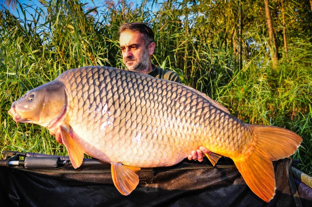 IONUT ZAMFIR | 21,4kg | octombrie 2015