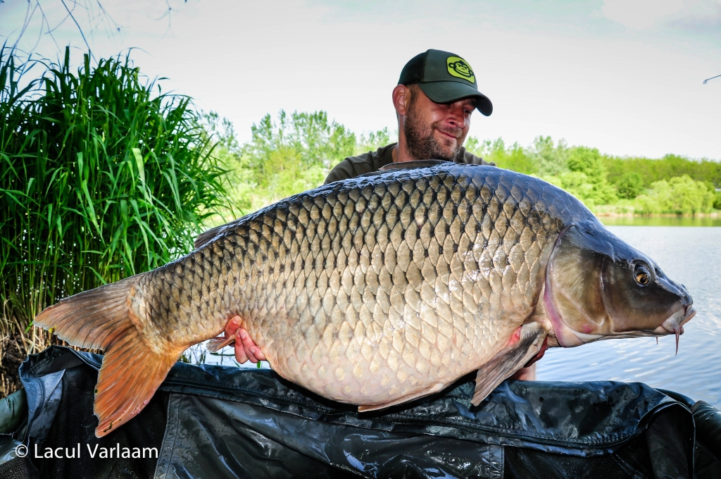 MIHAI PRODAN | 26,5kg