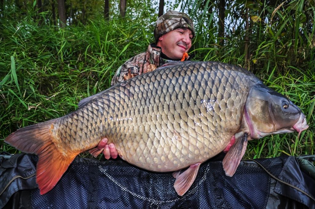 POMPILIU MIHAI | 24,5kg | octombrie 2015