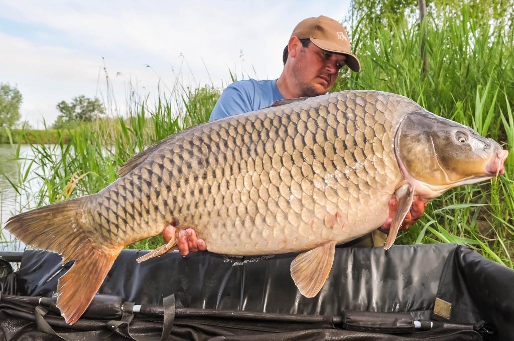 ROBERT ROZSDAS | 23kg | mai 2014
