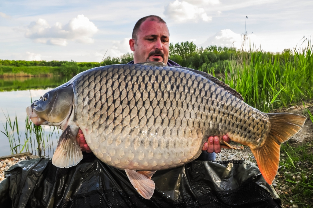 STEFAN DUMITRU | 20,3kg | iulie 2014